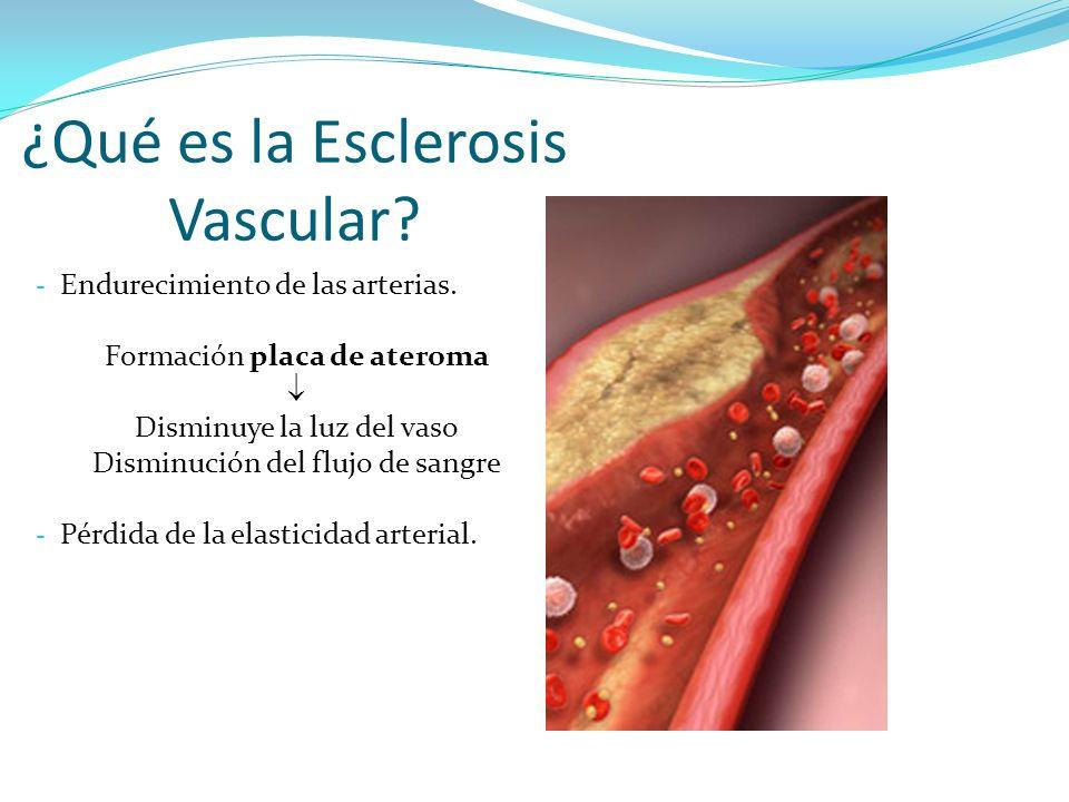 ¿Qué es la Esclerosis Vascular? - Endurecimiento de las arterias. Formación placa de ateroma Disminuye la luz del vaso Disminución del flujo de sangre