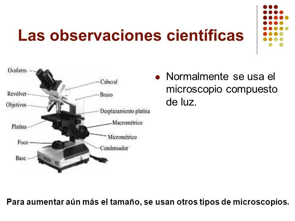 Las observaciones científicas Normalmente se usa el microscopio compuesto de luz. Para aumentar aún más el tamaño, se usan otros tipos de microscopios