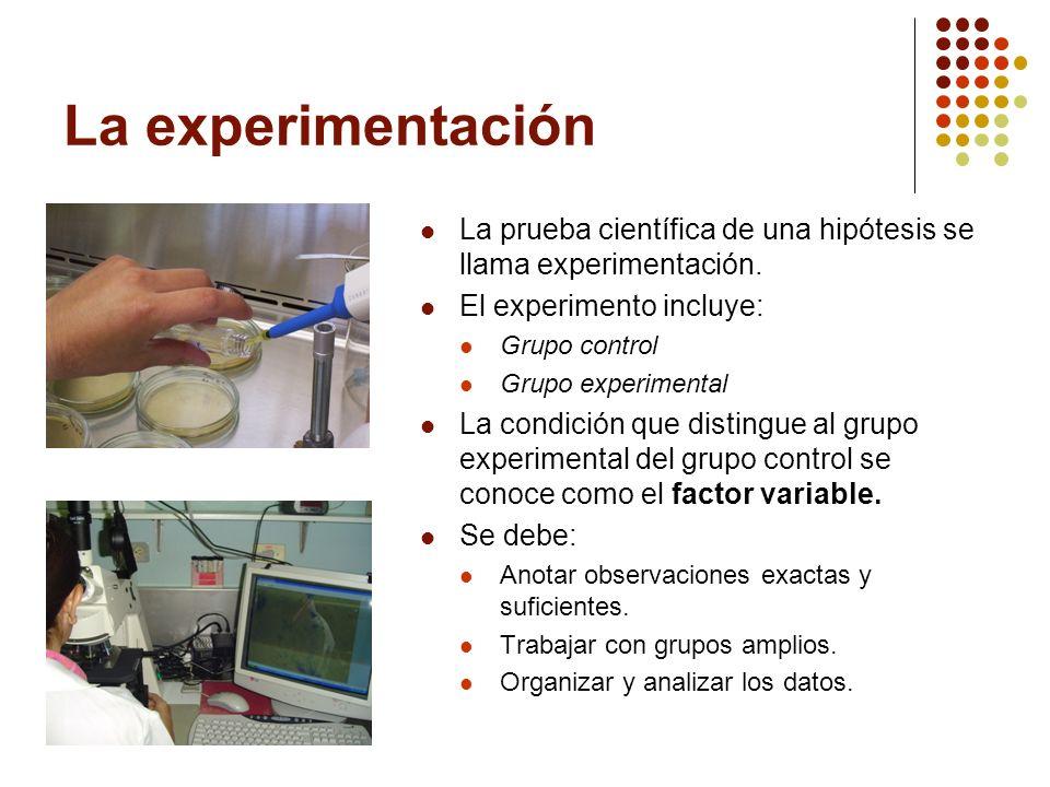 La experimentación La prueba científica de una hipótesis se llama experimentación. El experimento incluye: Grupo control Grupo experimental La condici