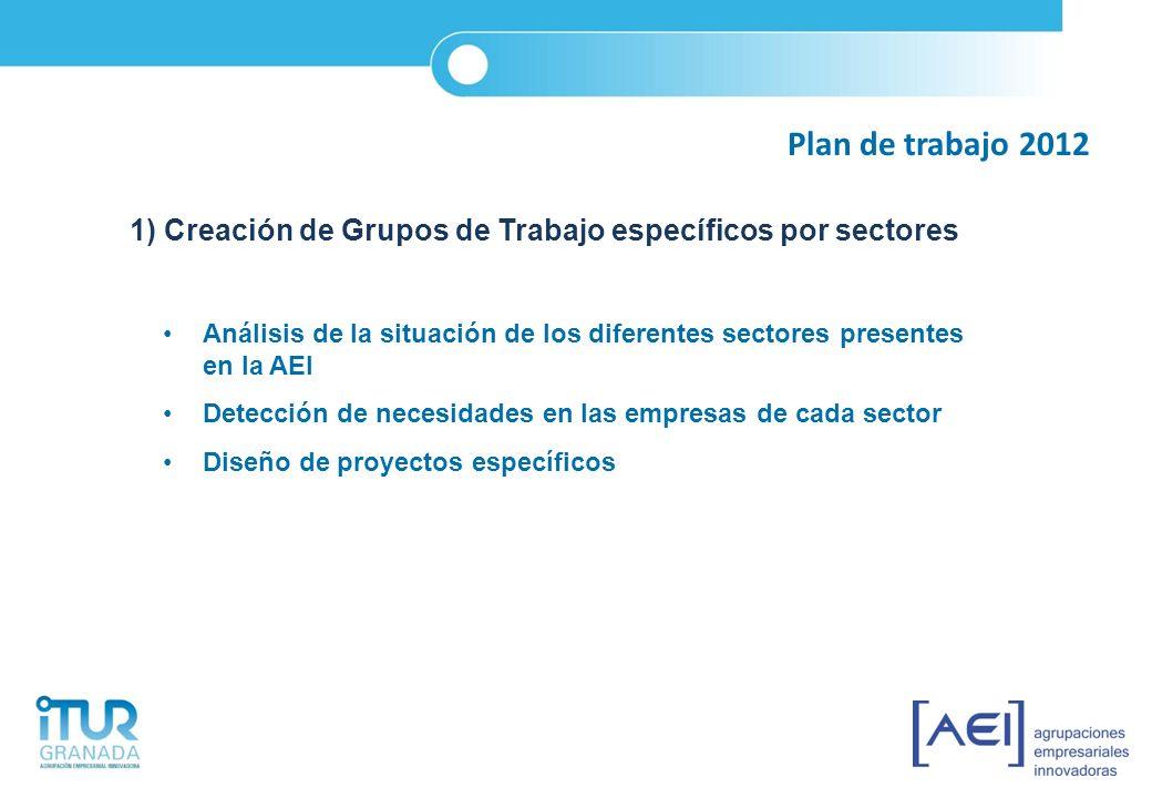 Plan de trabajo 2012 1) Creación de Grupos de Trabajo específicos por sectores Análisis de la situación de los diferentes sectores presentes en la AEI