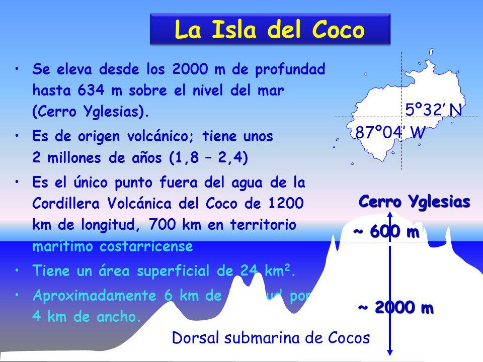 7 La Isla del Coco Se eleva desde los 2000 m de profundad hasta 634 m sobre el nivel del mar (Cerro Yglesias). Es de origen volcánico; tiene unos 2 mi