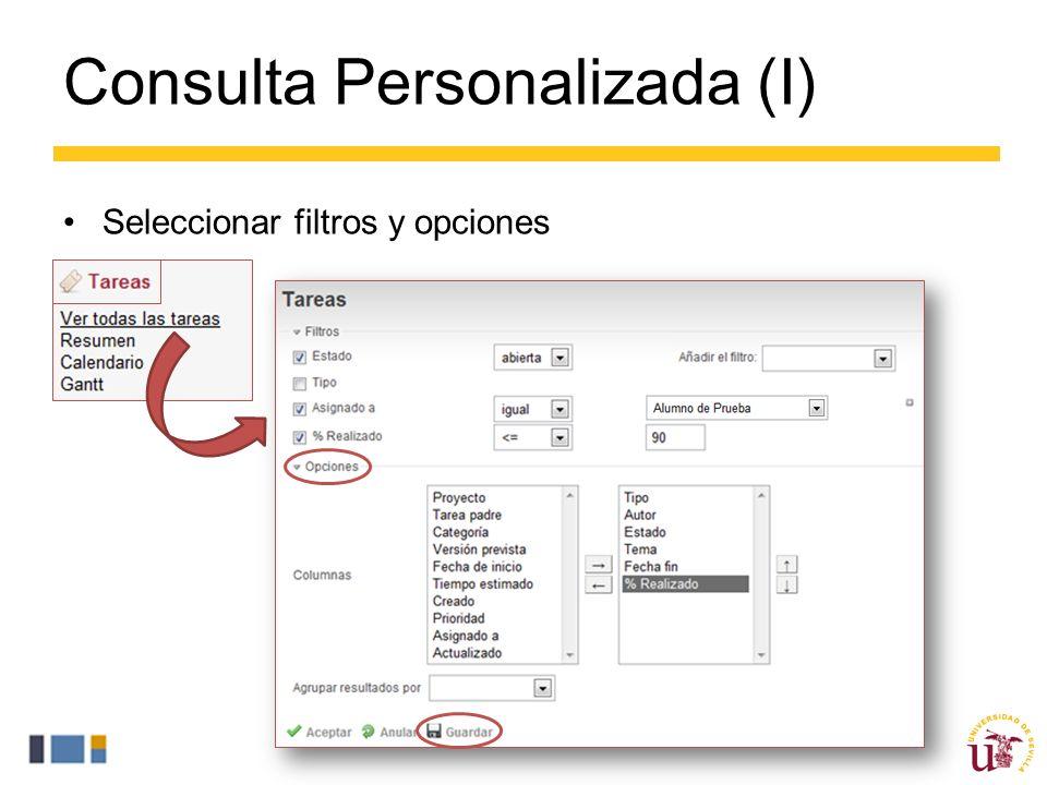 Consulta Personalizada (I) Seleccionar filtros y opciones