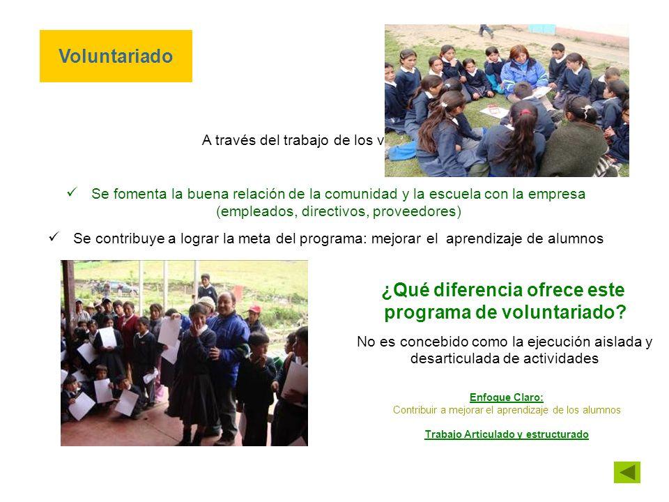 ¿Qué diferencia ofrece este programa de voluntariado.