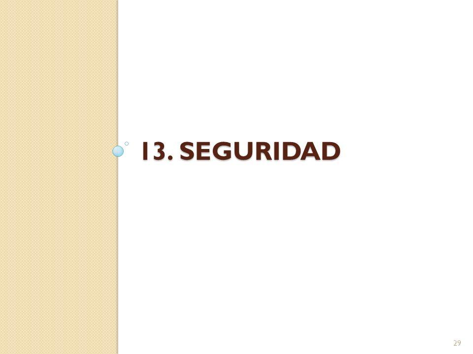 13. SEGURIDAD 29