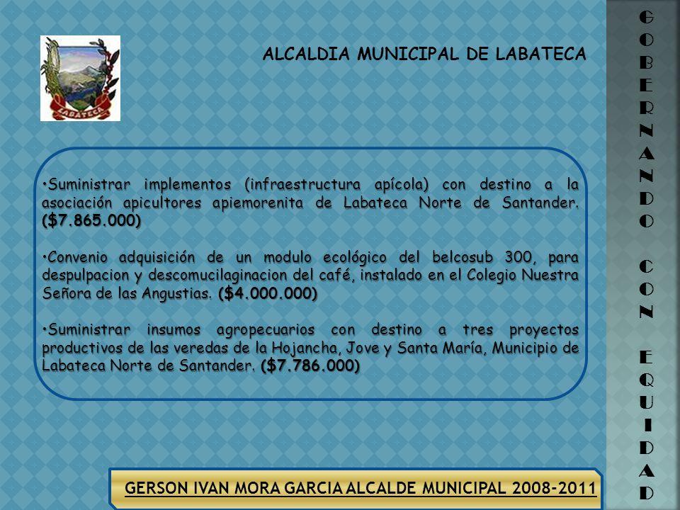 ALCALDIA MUNICIPAL DE LABATECA G O B E R N A N D O C O N E Q U I D A D GERSON IVAN MORA GARCIA ALCALDE MUNICIPAL 2008-2011 SECTOR PROYECTOS PRODUCTIVO