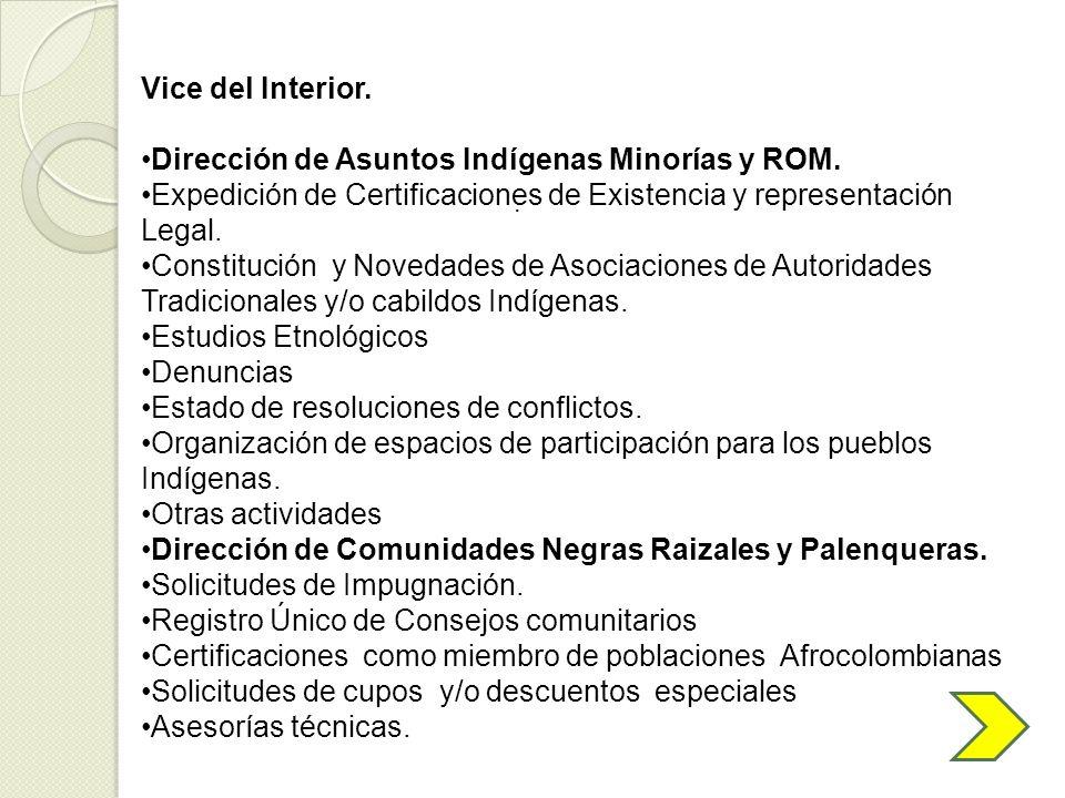 . Vice del Interior. Dirección de Asuntos Indígenas Minorías y ROM. Expedición de Certificaciones de Existencia y representación Legal. Constitución y