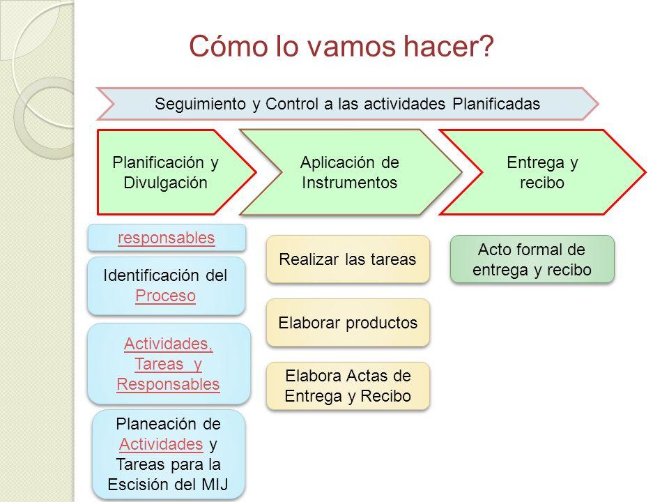 Cómo lo vamos hacer? Planificación y Divulgación Aplicación de Instrumentos Seguimiento y Control a las actividades Planificadas Entrega y recibo Iden