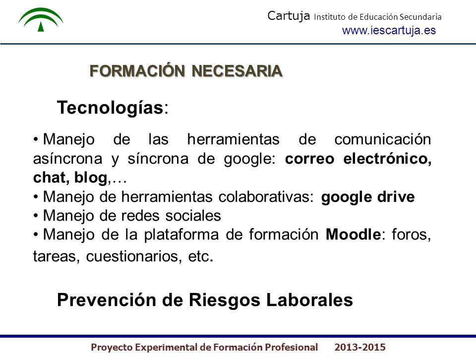 Cartuja Instituto de Educación Secundaria www.iescartuja.es Proyecto Experimental de Formación Profesional 2013-2015 FORMACIÓN NECESARIA Tecnologías: