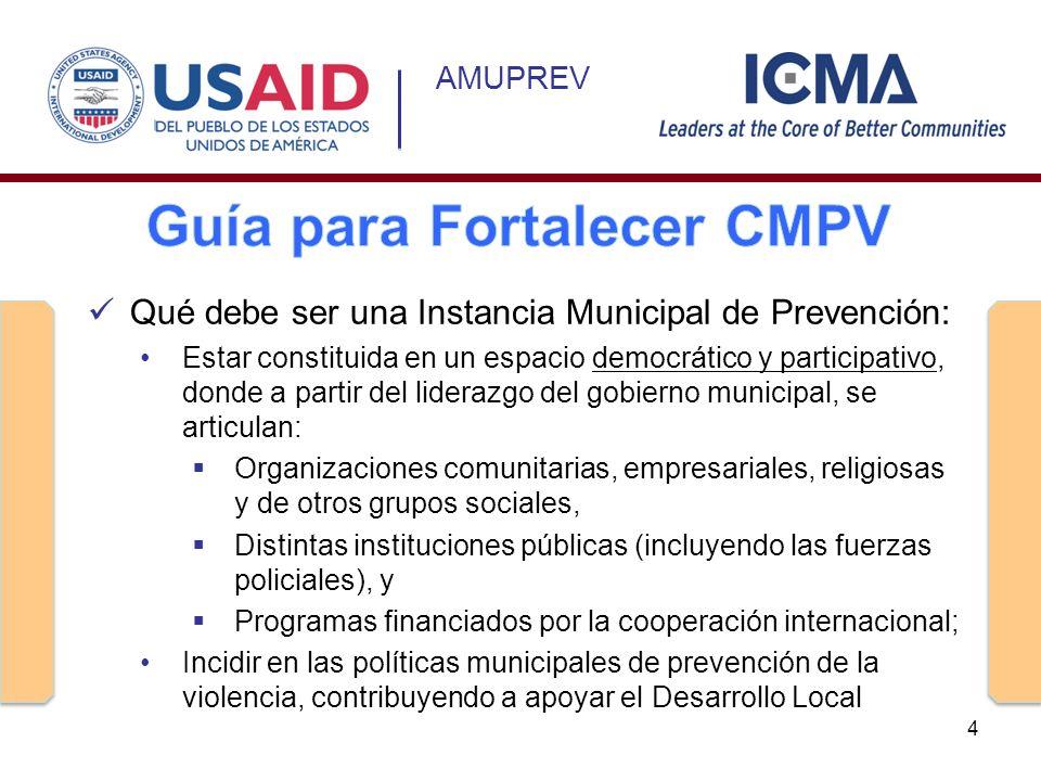 AMUPREV Qué debe ser una Instancia Municipal de Prevención: Estar constituida en un espacio democrático y participativo, donde a partir del liderazgo