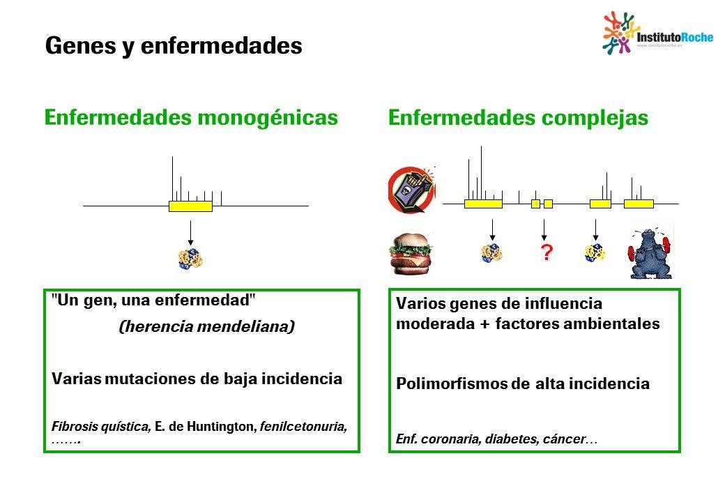 Genes y enfermedades Enfermedades monogénicas Enfermedades complejas