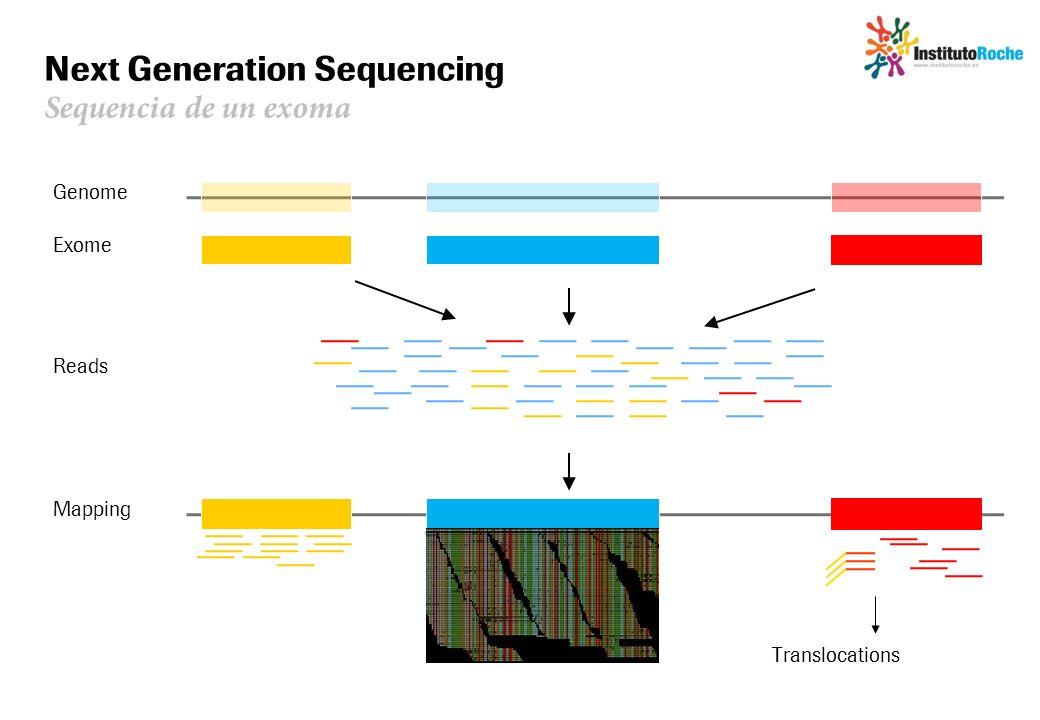 Next Generation Sequencing Sequencia de un exoma Genome Reads Mapping Exome GGAAGGGAAG SNPsIndels Translocations