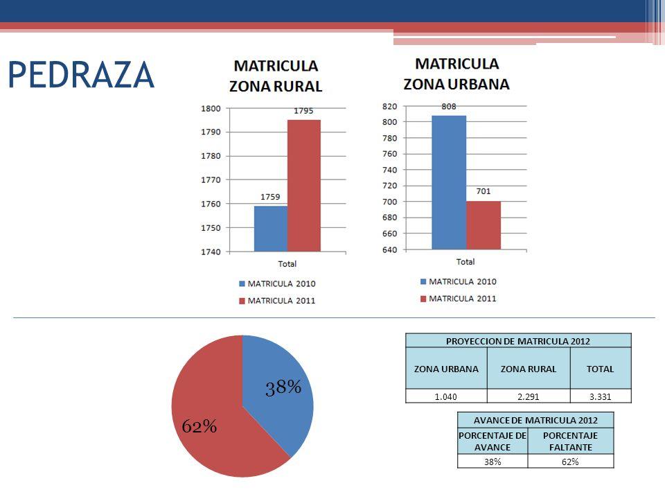 PEDRAZA PROYECCION DE MATRICULA 2012 ZONA URBANAZONA RURALTOTAL 1.0402.2913.331 AVANCE DE MATRICULA 2012 PORCENTAJE DE AVANCE PORCENTAJE FALTANTE 38%62%