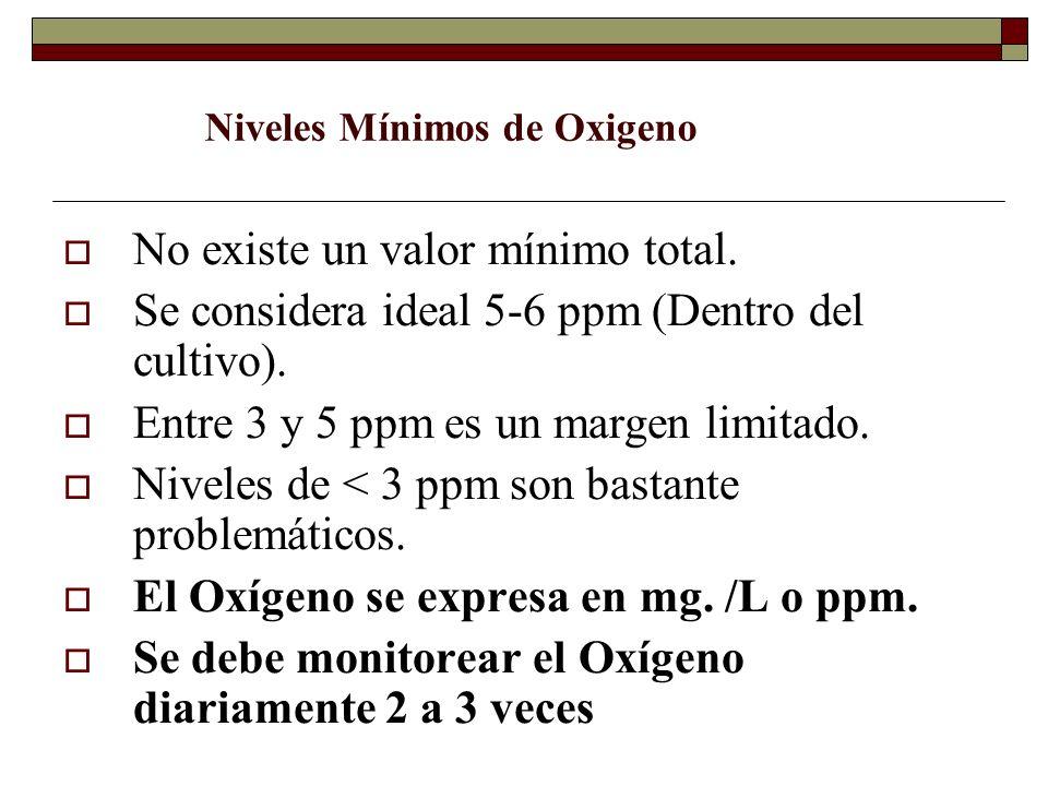 No existe un valor mínimo total. Se considera ideal 5-6 ppm (Dentro del cultivo). Entre 3 y 5 ppm es un margen limitado. Niveles de < 3 ppm son bastan