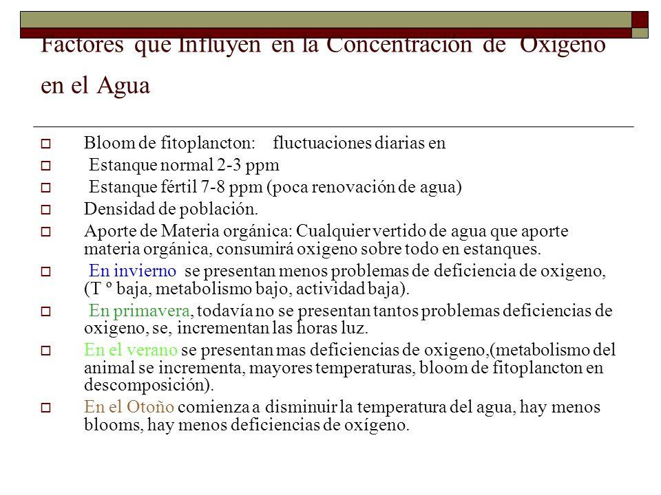 Factores que Influyen en la Concentración de Oxígeno en el Agua Bloom de fitoplancton: fluctuaciones diarias en Estanque normal 2-3 ppm Estanque férti