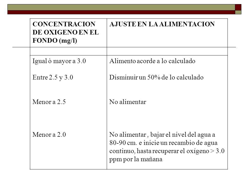 CONCENTRACION DE OXIGENO EN EL FONDO (mg/l) AJUSTE EN LA ALIMENTACION Igual ò mayor a 3.0 Entre 2.5 y 3.0 Menor a 2.5 Menor a 2.0 Alimento acorde a lo