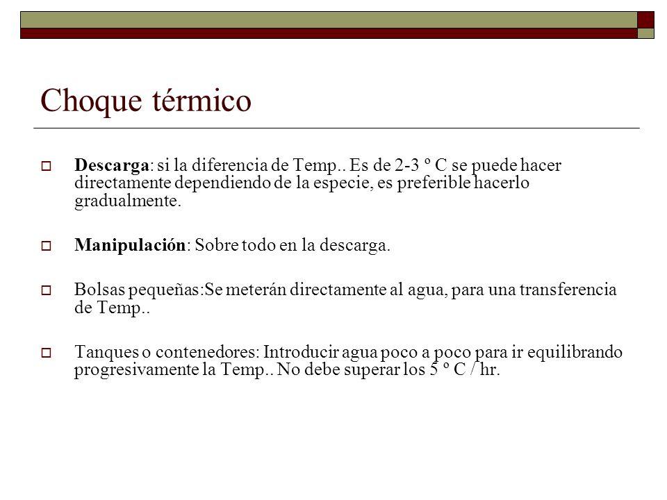 Choque térmico Descarga: si la diferencia de Temp.. Es de 2-3 º C se puede hacer directamente dependiendo de la especie, es preferible hacerlo gradual