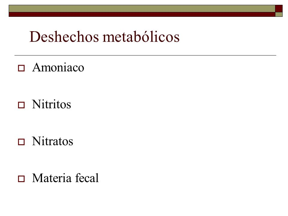 Deshechos metabólicos Amoniaco Nitritos Nitratos Materia fecal