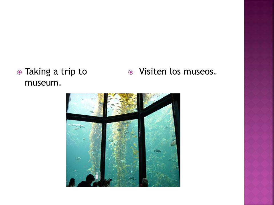 Taking a trip to museum. Visiten los museos.