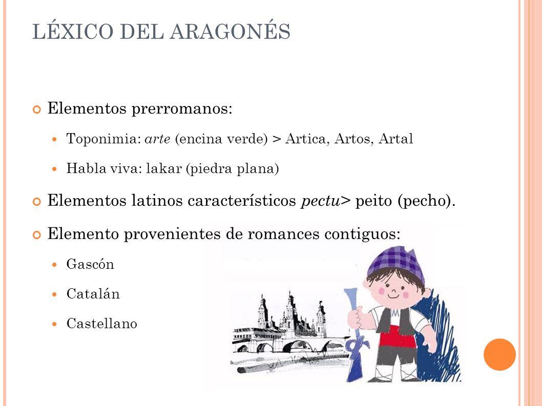 LÉXICO DEL ARAGONÉS Elementos prerromanos: Toponimia: arte (encina verde) > Artica, Artos, Artal Habla viva: lakar (piedra plana) Elementos latinos característicos pectu > peito (pecho).