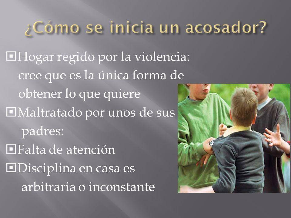 Acosador Víctima: Es aquel que acosa a compañeros más jóvenes que él y es a la vez acosado por chicos mayores o incluso es víctima en su propia casa.