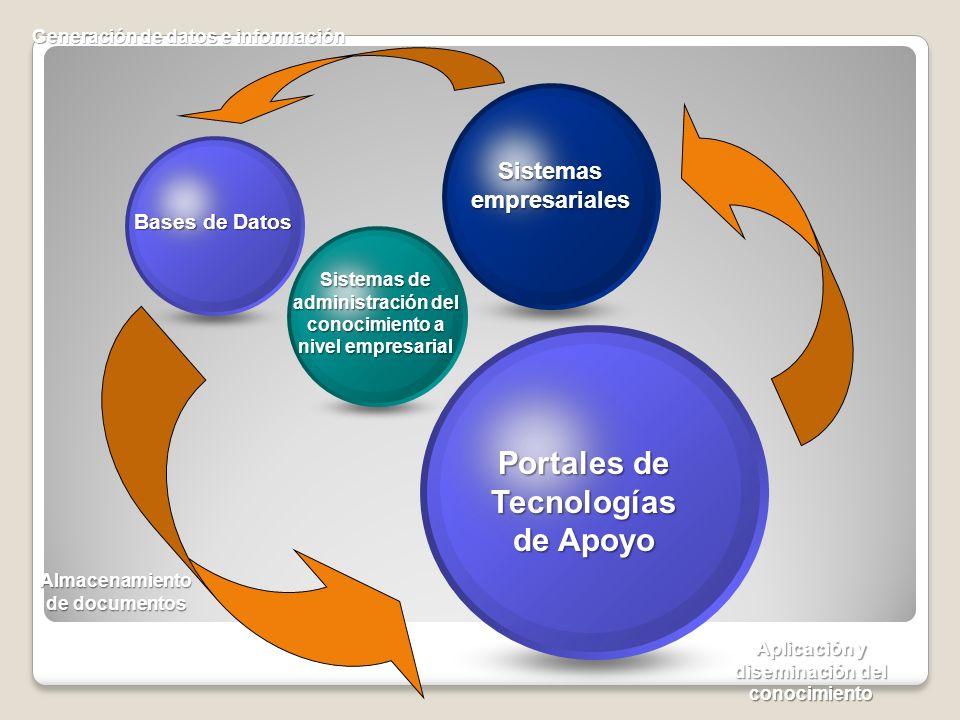 Bases de Datos Sistemas de administración del conocimiento a nivel empresarial Sistemas empresariales Portales de Tecnologías de Apoyo Almacenamiento