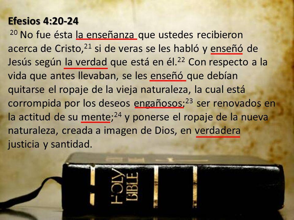 Efesios 4:20-24 Efesios 4:20-24 20 No fue ésta la enseñanza que ustedes recibieron acerca de Cristo, 21 si de veras se les habló y enseñó de Jesús según la verdad que está en él.