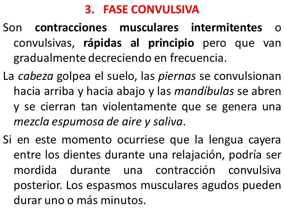 3. FASE CONVULSIVA Son contracciones musculares intermitentes o convulsivas, rápidas al principio pero que van gradualmente decreciendo en frecuencia.