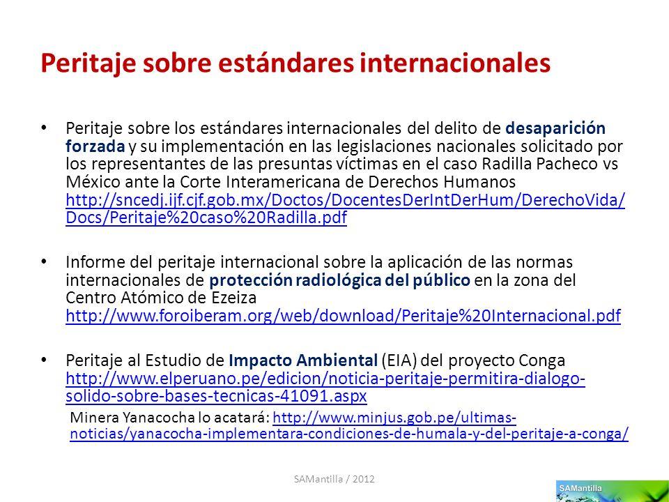 Peritaje sobre estándares internacionales Peritaje sobre los estándares internacionales del delito de desaparición forzada y su implementación en las