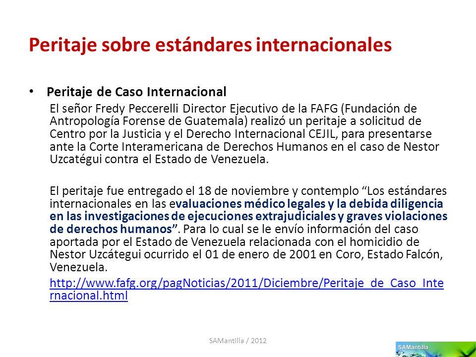 Peritaje sobre estándares internacionales Peritaje de Caso Internacional El señor Fredy Peccerelli Director Ejecutivo de la FAFG (Fundación de Antropo