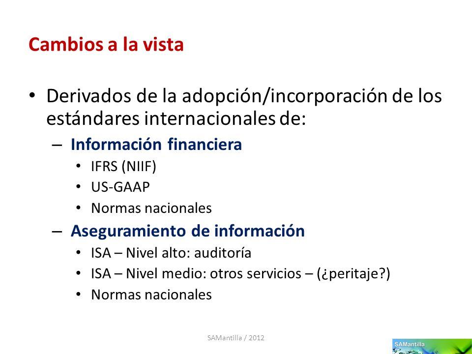 Cambios a la vista Derivados de la adopción/incorporación de los estándares internacionales de: – Información financiera IFRS (NIIF) US-GAAP Normas na