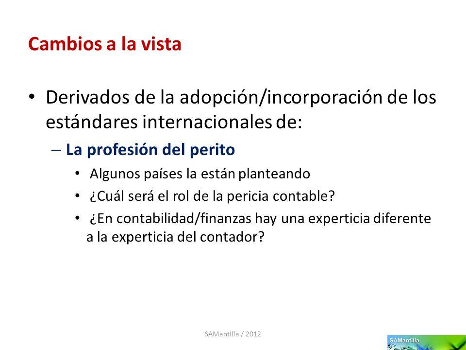 Cambios a la vista Derivados de la adopción/incorporación de los estándares internacionales de: – La profesión del perito Algunos países la están plan