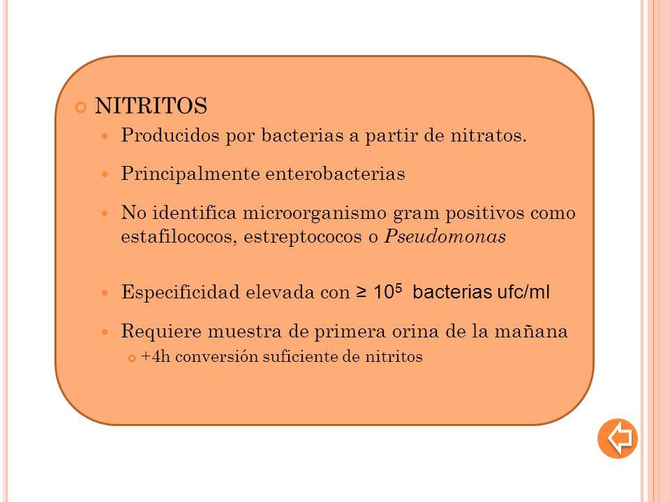 NITRITOS Producidos por bacterias a partir de nitratos. Principalmente enterobacterias No identifica microorganismo gram positivos como estafilococos,