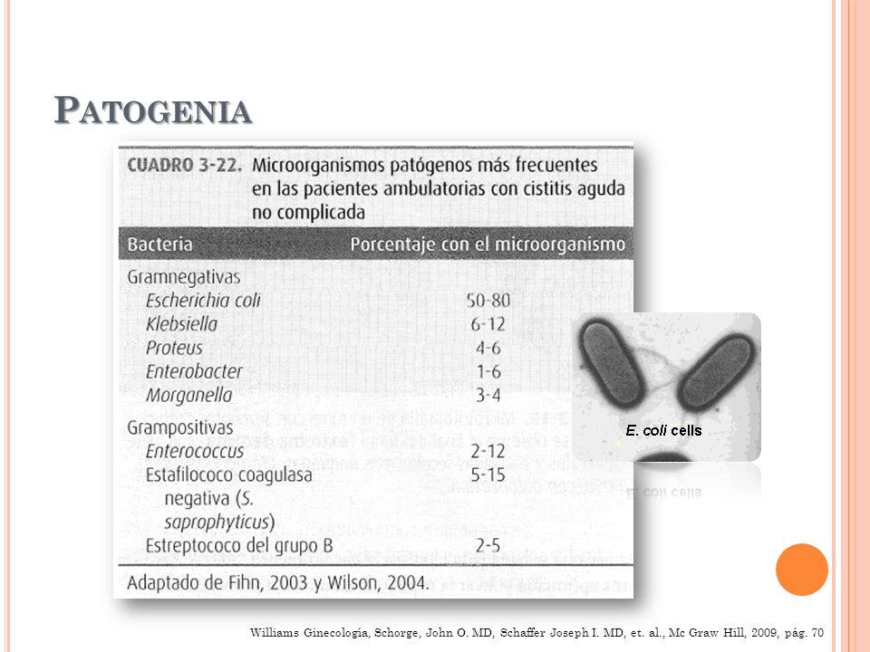 Cistitis Bacteriana Aguda No Complicada Dx: - Disuria - Polaquiuria - Urgencia - Incontinencia urinaria - Dolor hipogástrico Tx de 3 días VO Tx de 3 días VO : Trimetroprim – Sulfametoxazol (160/800mg) c/12h Ciprofloxacina 250 mg c/12h Norfloxacina 400 mg c/12h Levofloxacina 250 mg c/24h Gatifloxacina 400 mg c/24h Atención: - Fiebre 38º C - Hematuria - Disuria - Recurrencia
