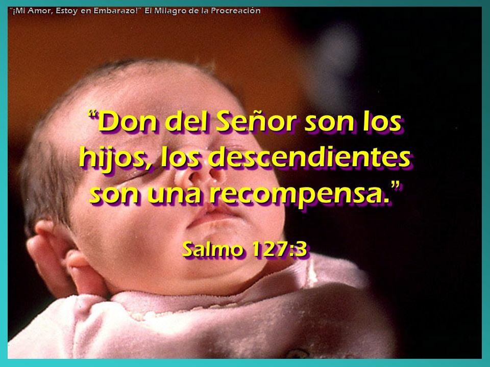 Don del Señor son los hijos, los descendientes son una recompensa. Don del Señor son los hijos, los descendientes son una recompensa. Salmo 127:3 Don