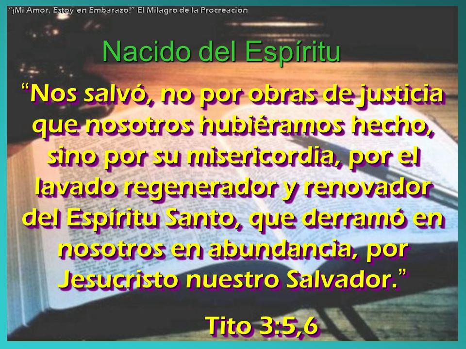 Nos salvó, no por obras de justicia que nosotros hubiéramos hecho, sino por su misericordia, por el lavado regenerador y renovador del Espíritu Santo,