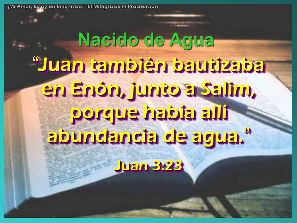 Juan también bautizaba en Enón, junto a Salim, porque había allí abundancia de agua. Juan también bautizaba en Enón, junto a Salim, porque había allí