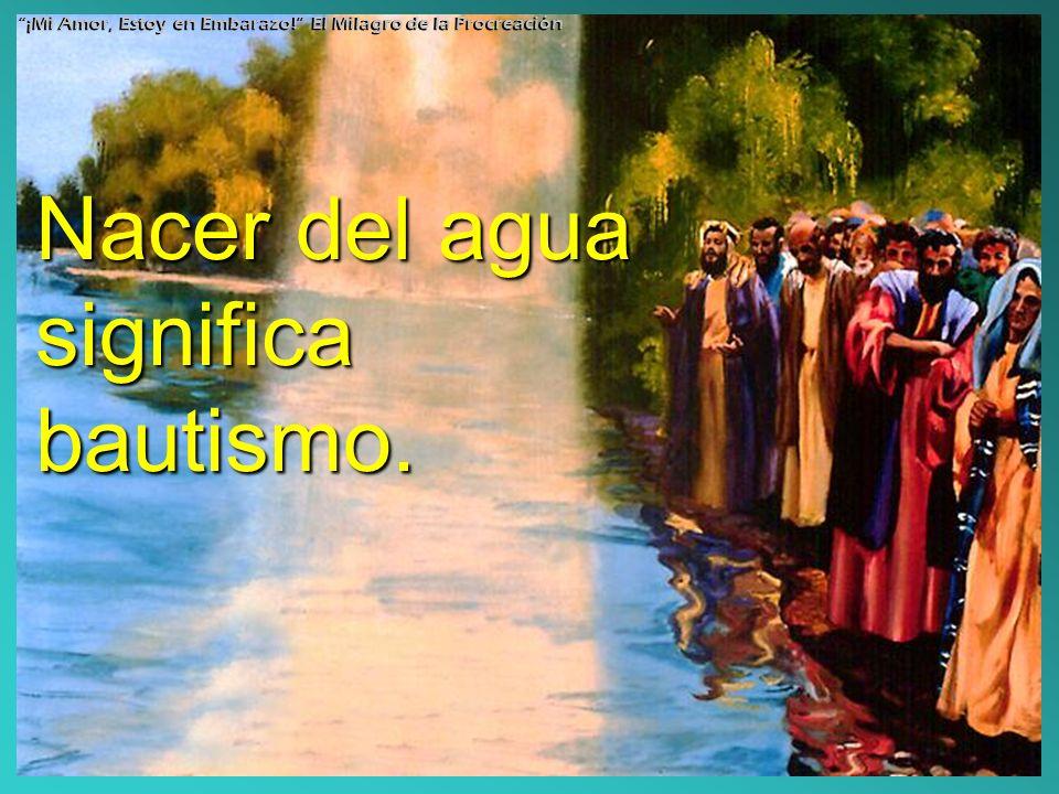 Nacer del agua significa bautismo. ¡Mi Amor, Estoy en Embarazo! El Milagro de la Procreación