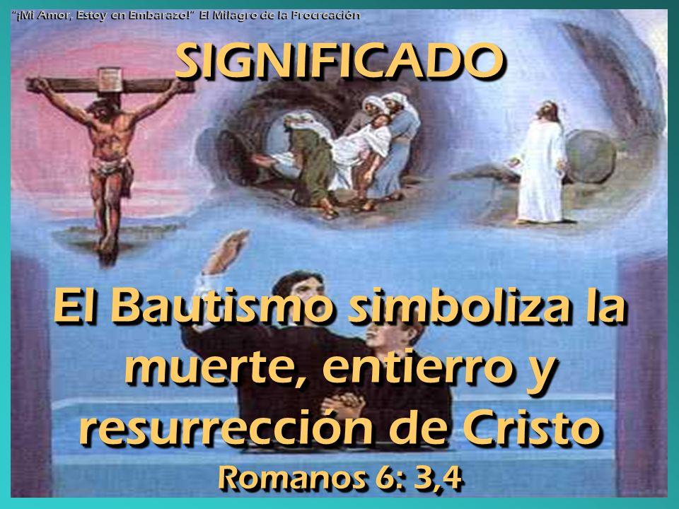 SIGNIFICADO El Bautismo simboliza la muerte, entierro y resurrección de Cristo Romanos 6: 3,4 ¡Mi Amor, Estoy en Embarazo! El Milagro de la Procreació