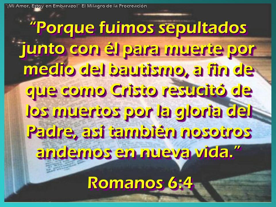Porque fuimos sepultados junto con él para muerte por medio del bautismo, a fin de que como Cristo resucitó de los muertos por la gloria del Padre, as