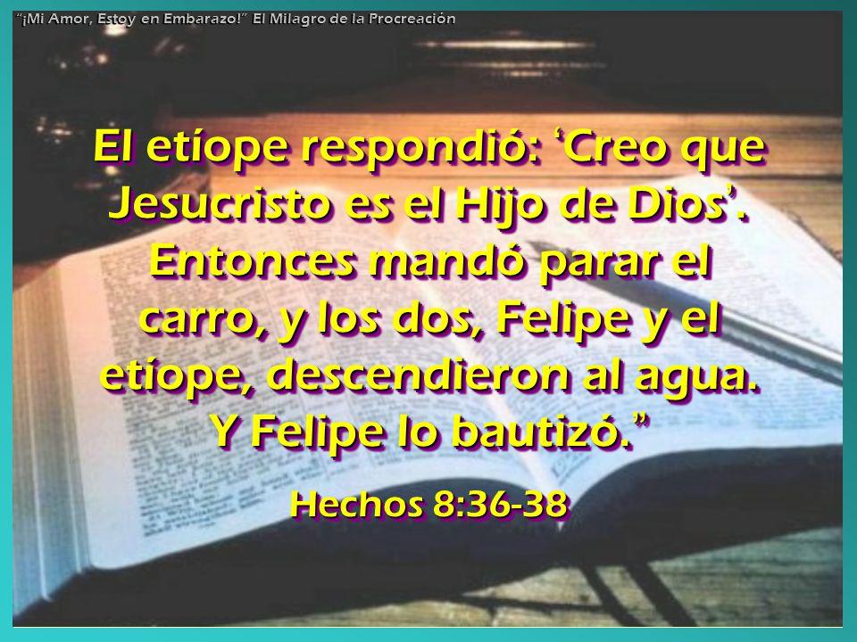 El etíope respondió: Creo que Jesucristo es el Hijo de Dios. Entonces mandó parar el carro, y los dos, Felipe y el etíope, descendieron al agua. Y Fel