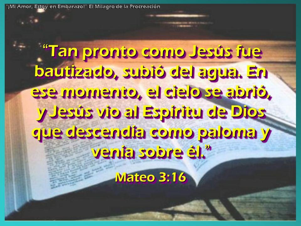Tan pronto como Jesús fue bautizado, subió del agua. En ese momento, el cielo se abrió, y Jesús vio al Espíritu de Dios que descendía como paloma y ve