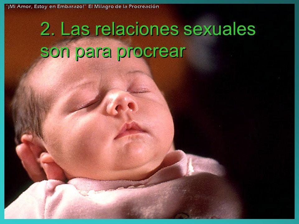 2. Las relaciones sexuales son para procrear ¡Mi Amor, Estoy en Embarazo! El Milagro de la Procreación