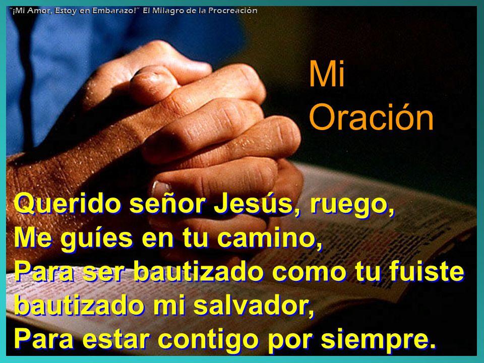 Mi Oración Querido señor Jesús, ruego, Me guíes en tu camino, Para ser bautizado como tu fuiste bautizado mi salvador, Para estar contigo por siempre.