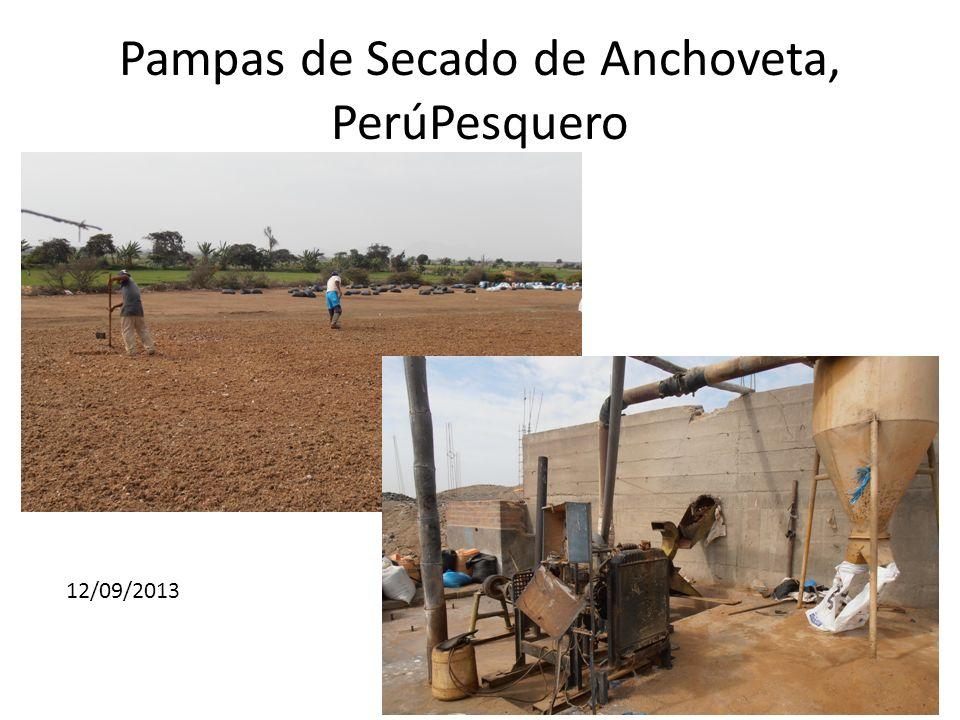 Pampas de Secado de Anchoveta, PerúPesquero 12/09/2013