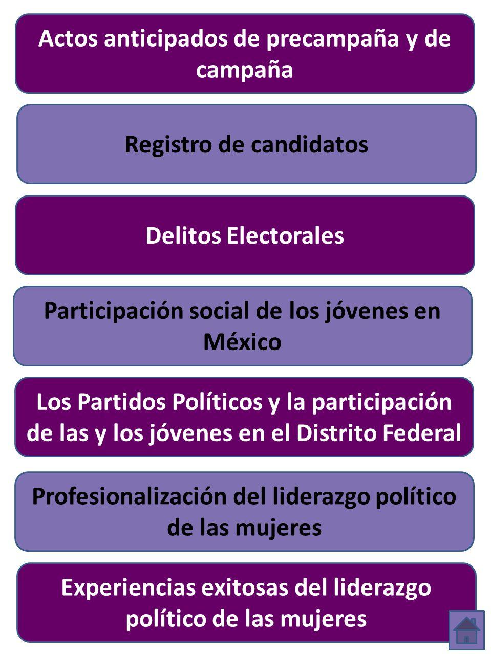 Actos anticipados de precampaña y de campaña Registro de candidatos Participación social de los jóvenes en México Los Partidos Políticos y la participación de las y los jóvenes en el Distrito Federal Delitos Electorales Profesionalización del liderazgo político de las mujeres Experiencias exitosas del liderazgo político de las mujeres