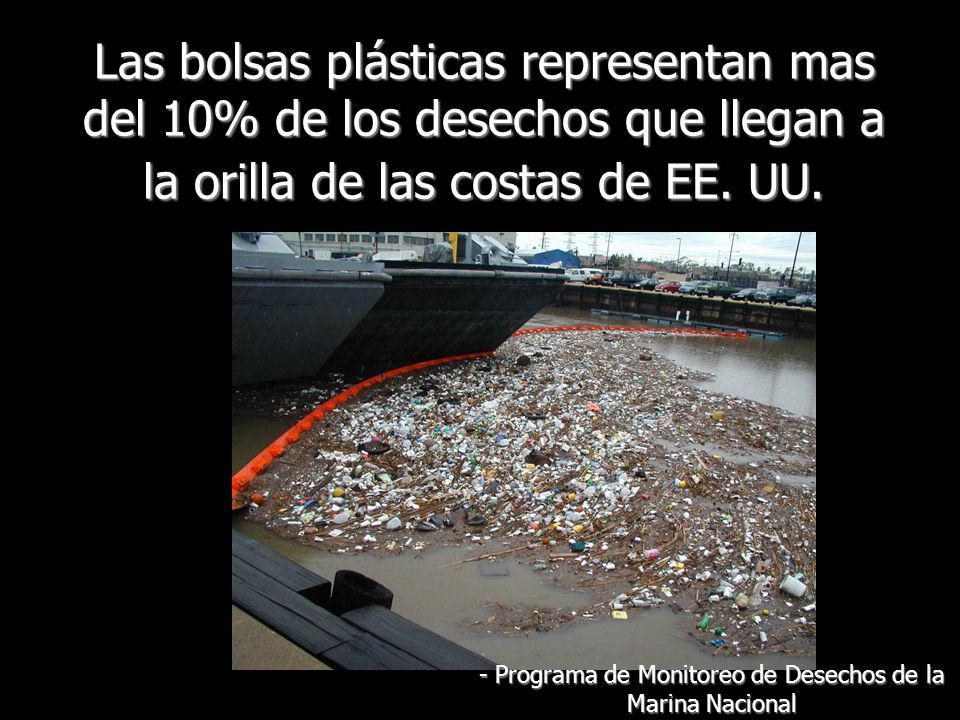 Las bolsas plásticas representan mas del 10% de los desechos que llegan a la orilla de las costas de EE. UU. - Programa de Monitoreo de Desechos de la