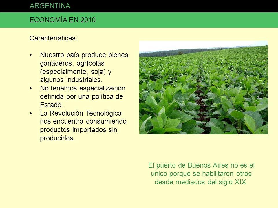 ARGENTINA ECONOMÍA EN 2010 Características: Nuestro país produce bienes ganaderos, agrícolas (especialmente, soja) y algunos industriales. No tenemos