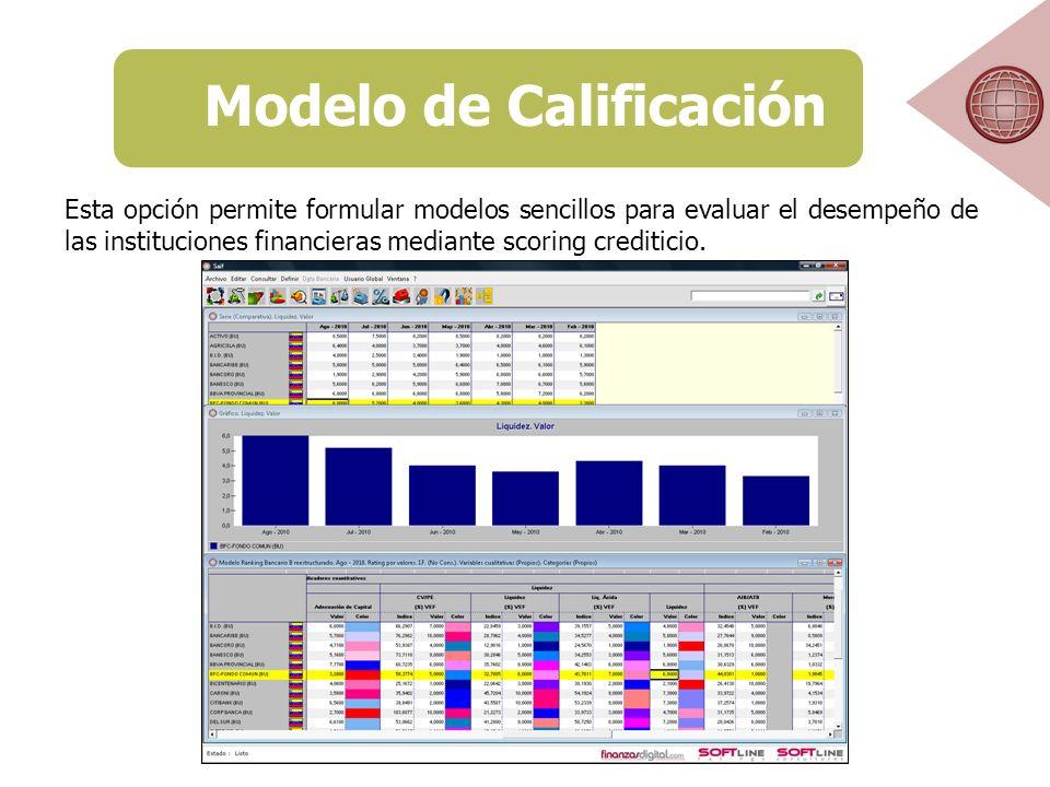 Esta opción permite formular modelos sencillos para evaluar el desempeño de las instituciones financieras mediante scoring crediticio.