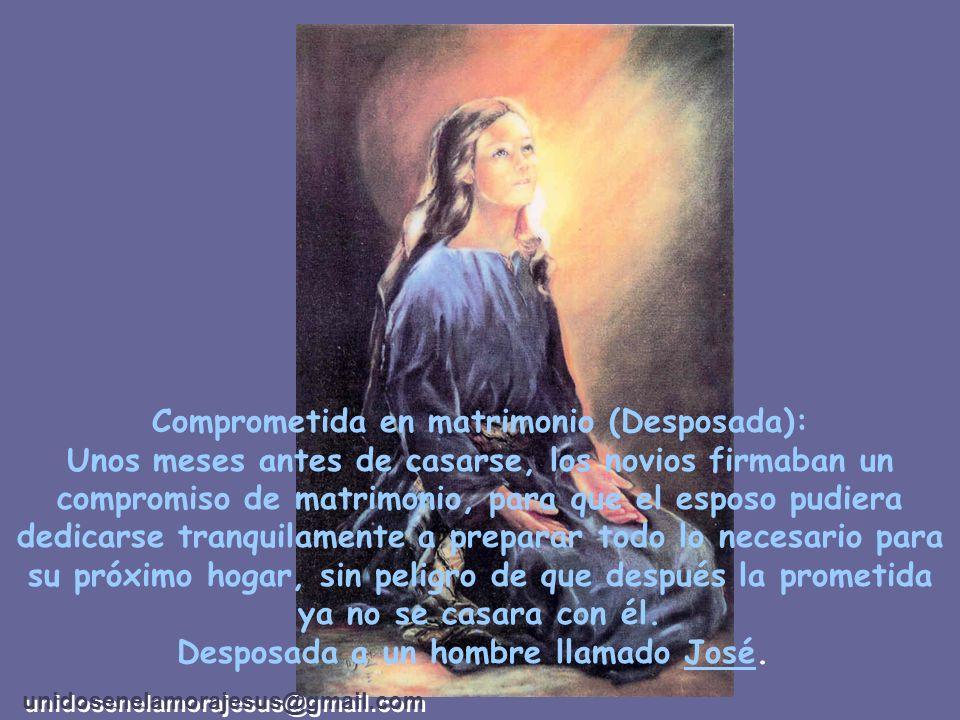 Una virgen es en la Santa Biblia una mujer que no ha cometido impurezas. En el mundo una mujer es más pura y más santa que las demás y la llamamos