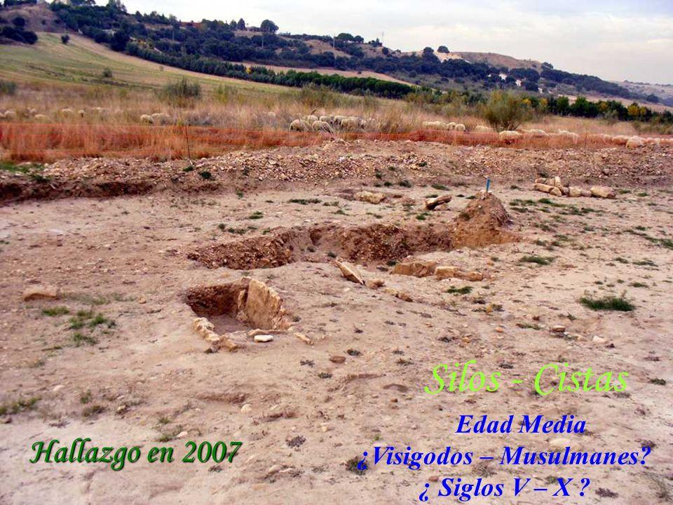 Hallazgo en 2007 Edad Media ¿Visigodos – Musulmanes? ¿ Siglos V – X ? Silos - Cistas